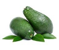 Verse groene avocadovruchten royalty-vrije stock foto's
