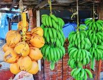 Verse groene banaan en kokosnoten Stock Foto's