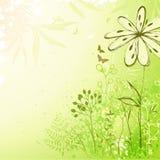 Verse groene bloemenachtergrond Stock Foto