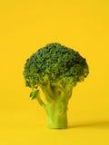 Verse groene broccoli Royalty-vrije Stock Foto's