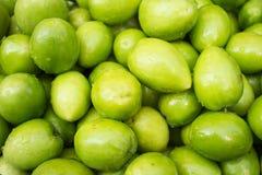 Verse groene jujubes Royalty-vrije Stock Foto's