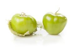 Verse Groene Organische Tomatillo royalty-vrije stock foto