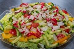 Verse groene plantaardige salade met komkommer, radijs, tomaten en peper stock fotografie