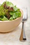 Verse groene salade Stock Fotografie