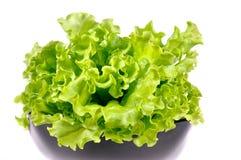 Verse groene salade royalty-vrije stock fotografie