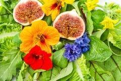 Verse groene salade met bloemen en fig.vruchten Gezond voedsel Stock Afbeeldingen