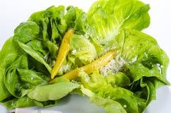 Verse Groene Salade met Gele Peper Royalty-vrije Stock Foto's