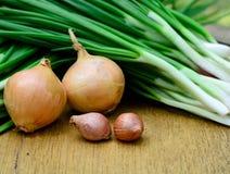 Verse groene sjalot en ui voor het koken Royalty-vrije Stock Fotografie