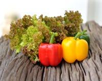 Verse groene slabladeren, Zoete gele Spaanse pepers, rode groene Spaanse pepers, Stock Afbeelding