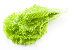 Verse groene slasalade royalty-vrije stock afbeeldingen