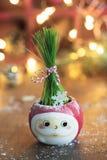 Verse Groene tarwe in Kerstmankop met Kerstmislichten en decorum royalty-vrije stock afbeeldingen