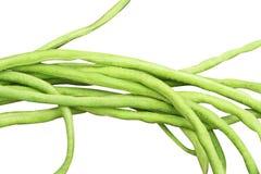 Verse groene yardlongboon stock afbeelding
