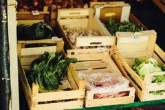 Verse groente op de landbouwbedrijfmarkt Natuurlijke lokale producten op de landbouwbedrijfmarkt Het oogsten Seizoengebonden prod stock foto's