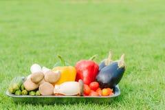 Verse groente in verzilverd tafelgerei Stock Foto