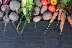 Verse groenteachtergrond, gezond vitaminevoedsel Landbouwsupermarkt stock foto