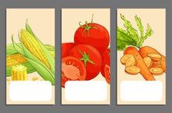 Verse groentekaarten royalty-vrije stock afbeeldingen