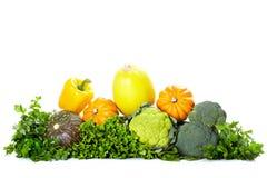 Verse groenten. Stock Afbeeldingen