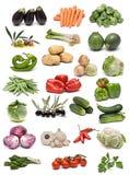 Verse groenten. Stock Afbeelding