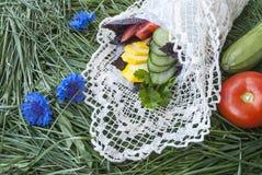 Verse groenten in de doos op het groene gras Stock Foto