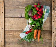 Verse groenten in de pan met op houten achtergrond te koken con Royalty-vrije Stock Foto