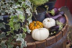 Verse groenten die bij de straatwinkel verkopen Royalty-vrije Stock Fotografie