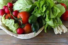 Verse groenten in een mand Royalty-vrije Stock Foto