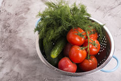 Verse groenten in een zeef Royalty-vrije Stock Foto