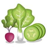 Verse groenten gezond voedsel royalty-vrije illustratie