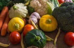 Verse groenten, kleine pompoen, evenals andere die groenten, bloemkool, broccoli, knoflook, tomaten op een eco-landbouwbedrijf wo royalty-vrije stock fotografie