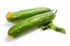 Verse Groenten, komkommer Stock Afbeelding