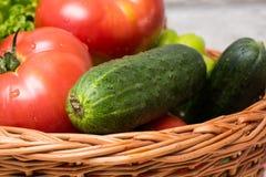 Verse Groenten in Mand Tomaat, komkommer, peper en sla royalty-vrije stock foto