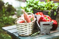 Verse groenten op hout stock foto's