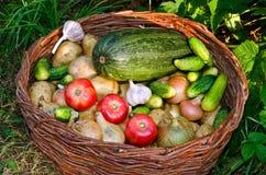 Verse groentenmengeling in een rieten mand Stock Foto's