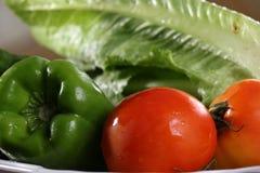 Verse groententomaat en Groen Capsicum in de plaat, Doubai op 22 februari 2017 Royalty-vrije Stock Fotografie