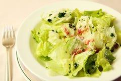 Verse groentesalade Stock Afbeeldingen