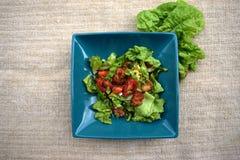 Verse groentesalade, gezond voedsel, tomaten en saladebladeren Gezonde kippensalade met verse groenten Royalty-vrije Stock Afbeeldingen