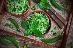 Verse groentesalade met witte kool, groene erwten en munt Royalty-vrije Stock Afbeelding