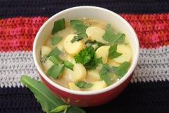 Verse groentesoep met aardappels royalty-vrije stock afbeeldingen