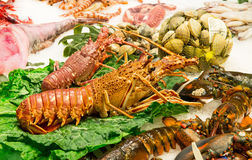 Verse grote krabben, garnalen en zeekreeft bij marktla Boqueria in Barcelona Stock Fotografie