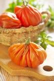 Verse grote tomaten Royalty-vrije Stock Afbeelding