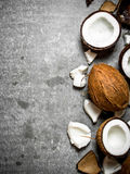 Verse harde kokosnoten Royalty-vrije Stock Fotografie