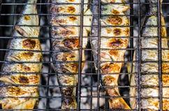 Verse Haringen op Barbecue Royalty-vrije Stock Foto