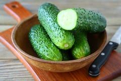 Verse heerlijke komkommer in een kom Royalty-vrije Stock Afbeeldingen