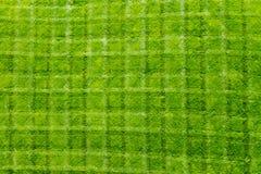 Verse het Patroon van het Besnoeiingsgras Textuur Als achtergrond Royalty-vrije Stock Afbeeldingen