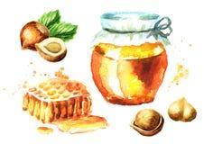 Verse honing en hazelnootreeks Waterverfhand getrokken illustratie Royalty-vrije Stock Foto