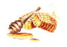 Verse honingraten met honingsdipper samenstelling Waterverfhand getrokken illustratie Stock Afbeelding