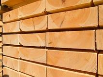 Verse houten nagels stock afbeeldingen