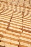 Verse houten nagels Royalty-vrije Stock Afbeelding