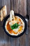 Verse hummus met peterselie Stock Foto's