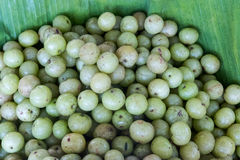 Verse Indische goorsberry Royalty-vrije Stock Foto's